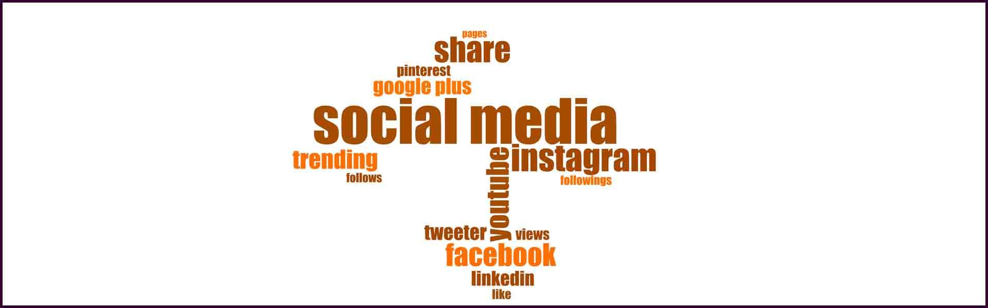 das Bild zeigt in Textform verschiedene Social Media Plattformen wie Facebook oder Instagram